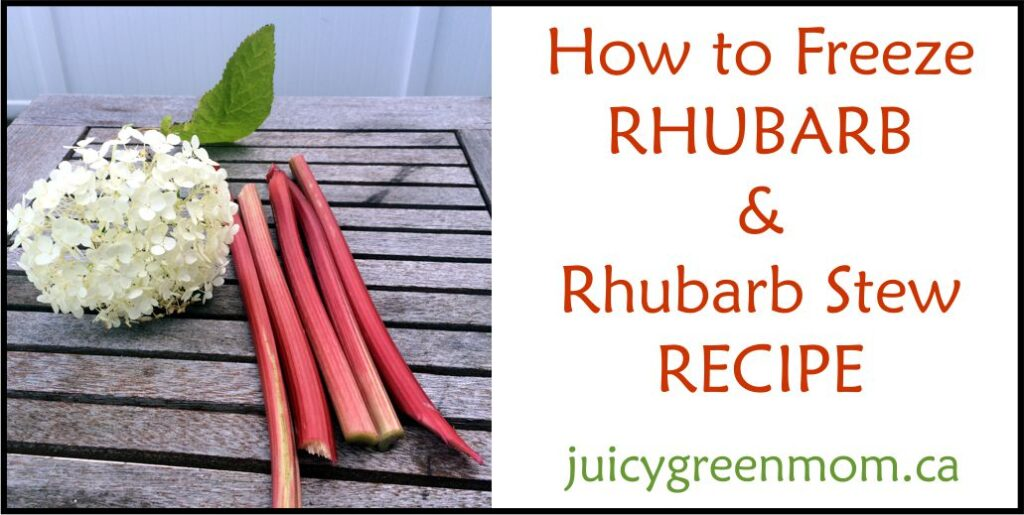 how-to-freeze-rhubarb-juicygreenmom-landscape