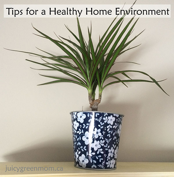 Tips for a Healthy Home Environment