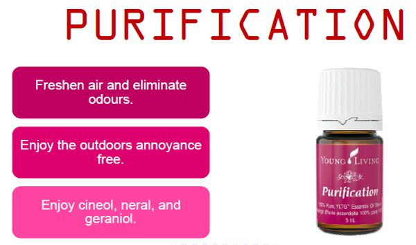 young living purification essential oil blend