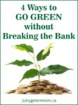 4 Ways to Go Green Without Breaking the Bank