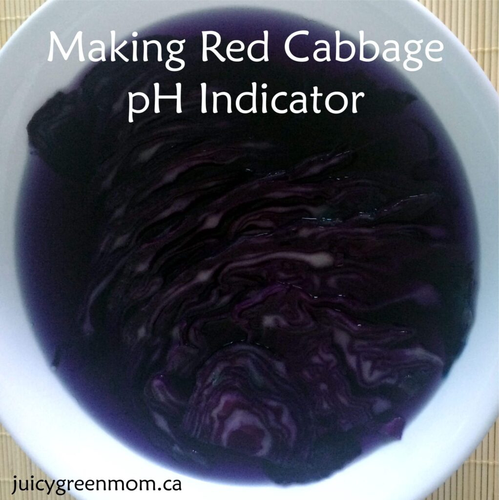 red-cabbage-pH-indicator-juicygreenmom