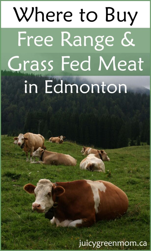 Where to Buy Free Range Grass Fed Meat in Edmonton
