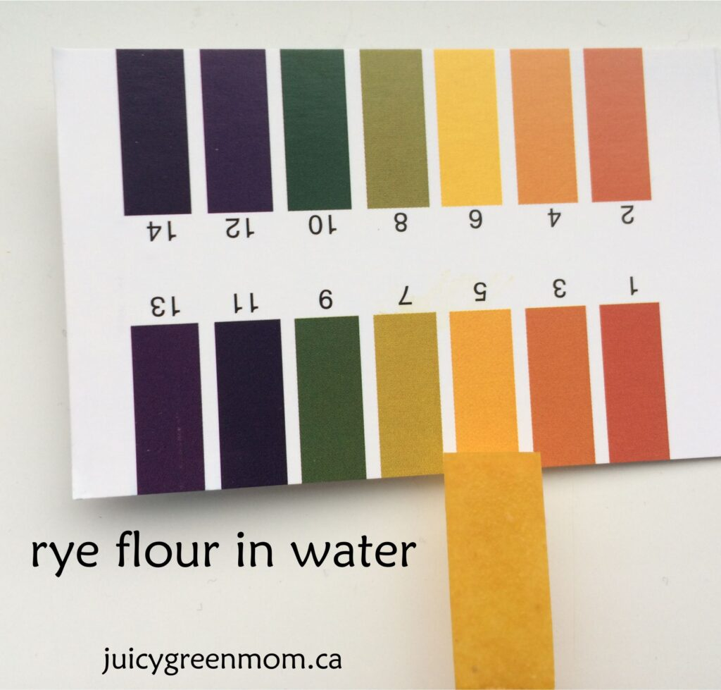 rye-flour-water-pH-juicygreenmom