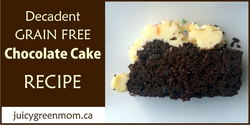 grain free chocolate cake juicygreenmom-landscape