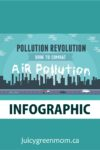 pollution revolution infographic title juicygreenmom
