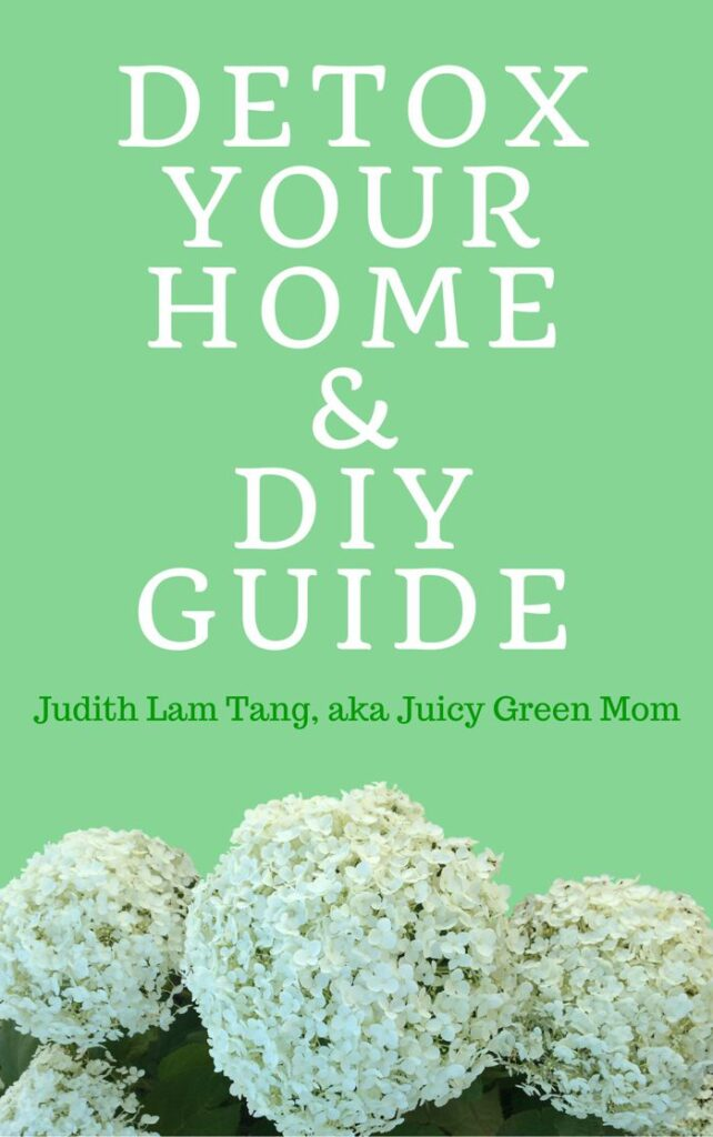Detox your home & DIY Guide ebook juicygreenmom