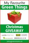 my favourite green things Christmas giveaway juicygreenmom