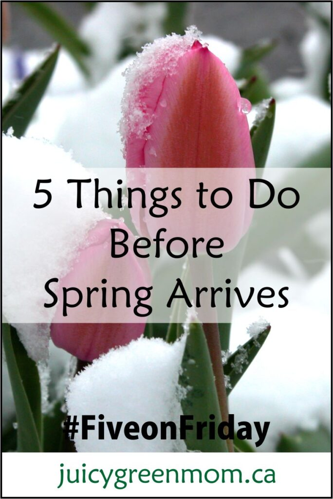 5 Things to Do Before Spring Arrives #FiveonFriday