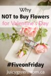 five-on-friday-why not to buy flowers for valentines day juicygreenmom