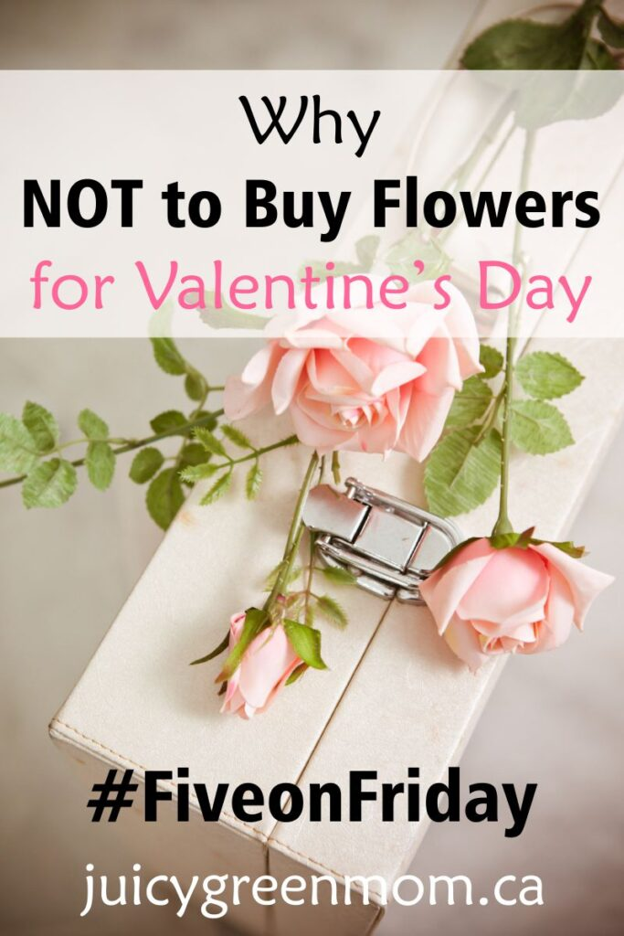 Why NOT to Buy Flowers for Valentine's Day #FiveonFriday
