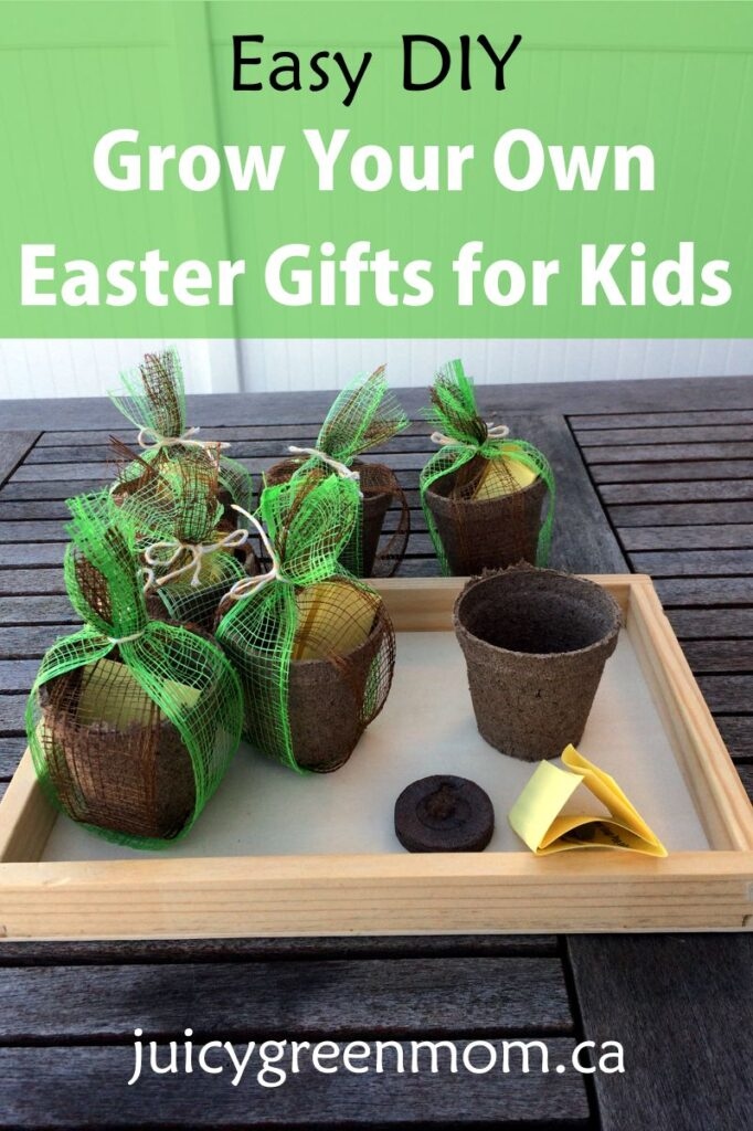 easy DIY Grow Your Own Easter Gifts for Kids juicygreenmom