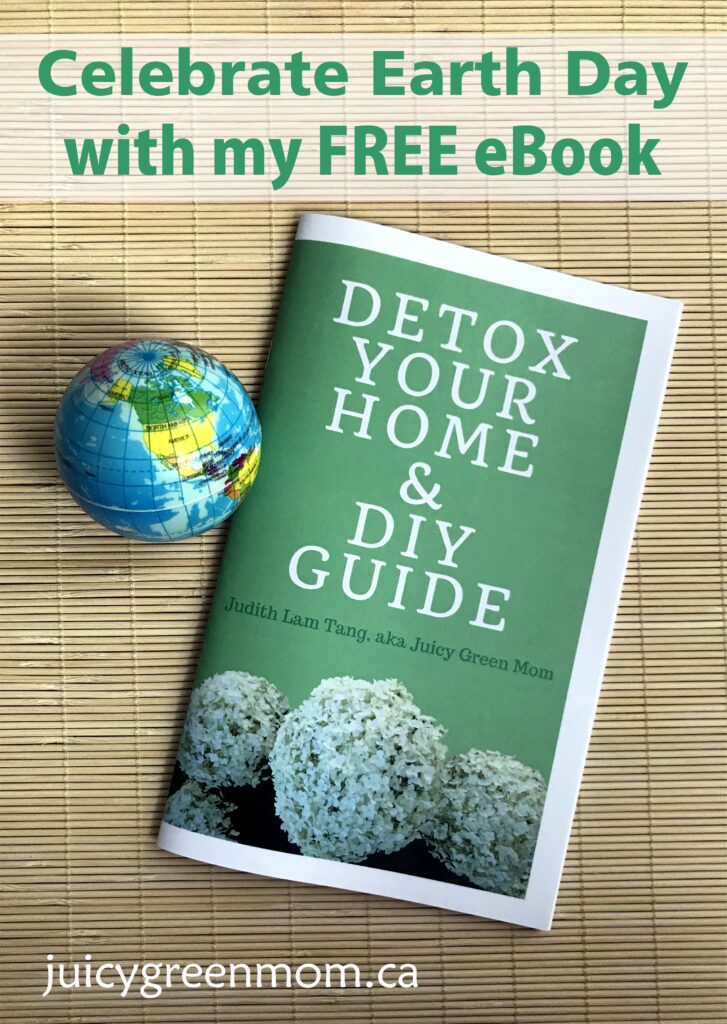 celebrate earth day with my free ebook detox your home & diy guide juicygreenmom