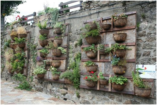vertical garden with pots