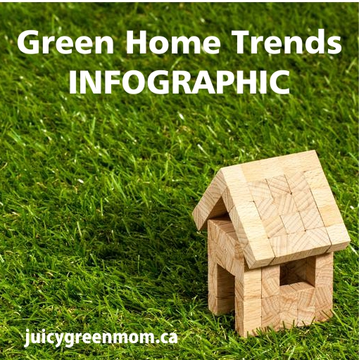 GUEST POST: Green Home Trends Infographic