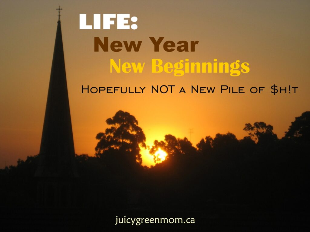new year new beginnings hopefully not a new pile of shit juicygreenmom